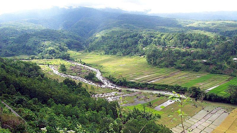 Pendangkalan Reforma Agraria