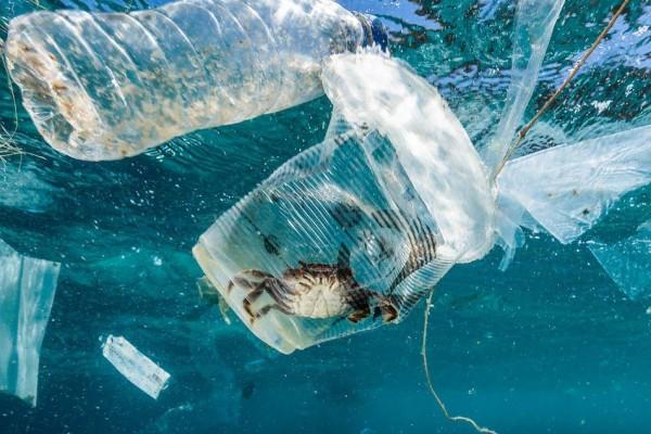 Sampah Laut yang Makin Mengerikan