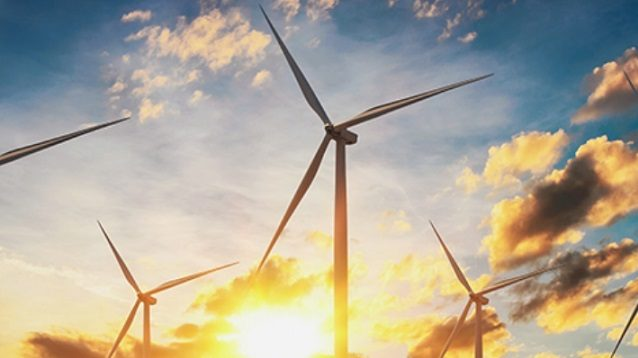 Pemerintah Hentikan Proyek Karbon Ilegal